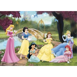 Puzzle Disney Princesses...